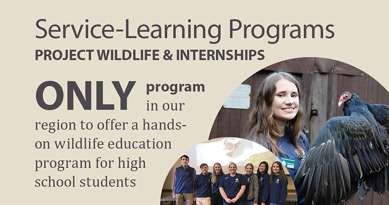Hands-on wildlife education for high school students