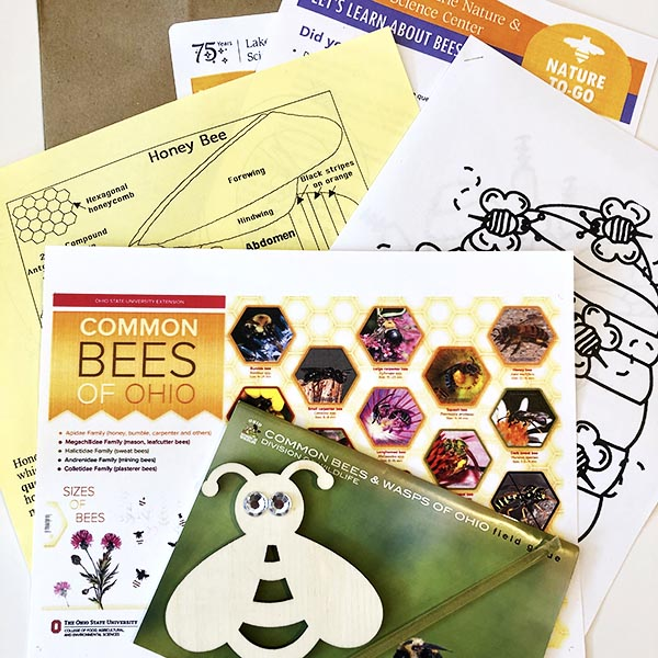 Bees kit photo web