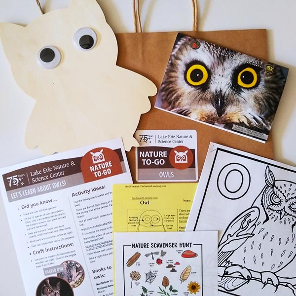 Nature To-Go Owl kit