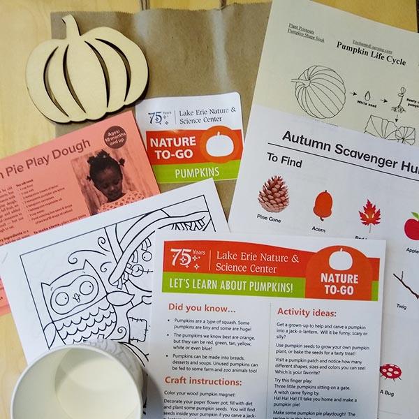 Pumpkins kit photo web