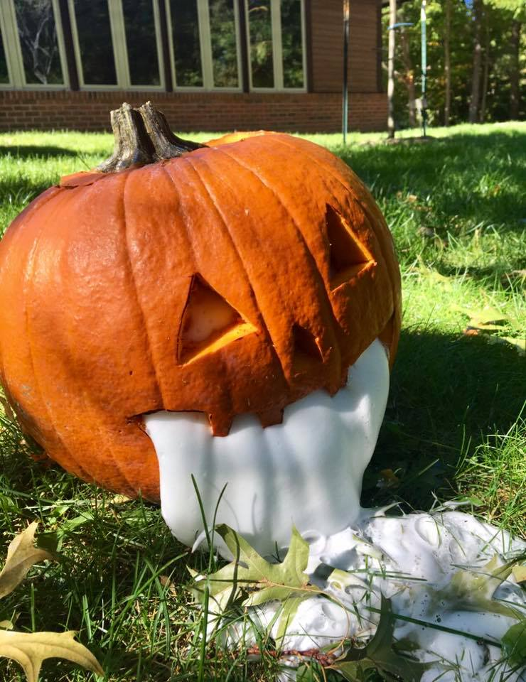 National Pumpkin Day Science Experiment