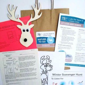 Reindeer kit photo